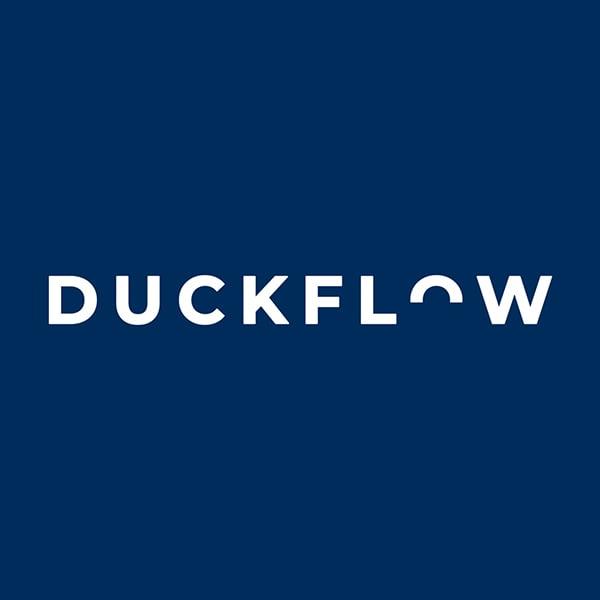 Duckflow 1